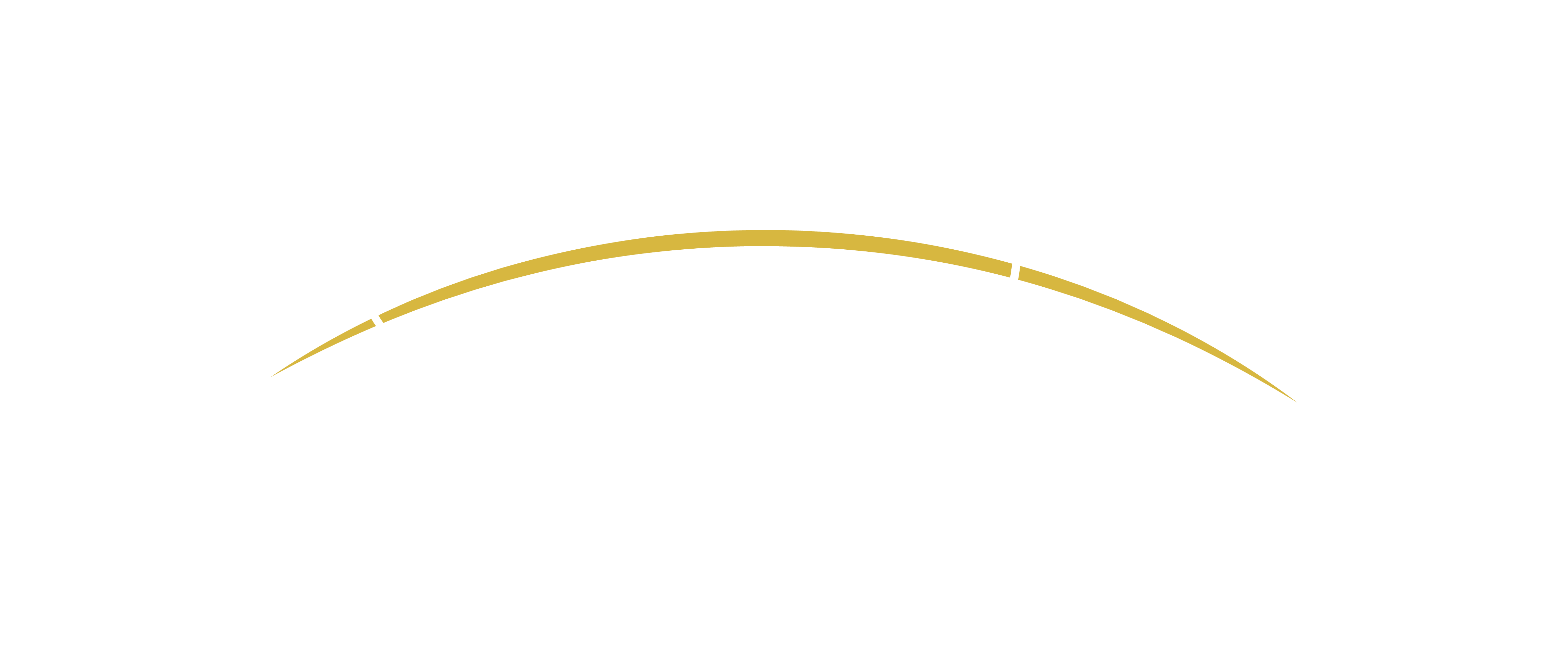 Logo para equipe interna da Prudencial - Orion
